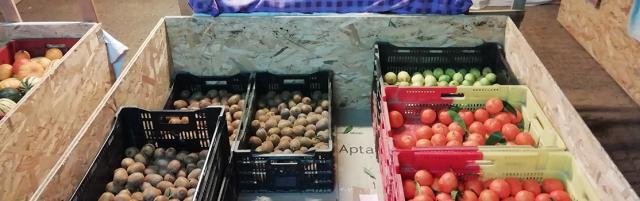 galerie/blog/stockagefruitsagrumes.jpg